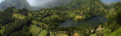Plantas de poder asturianas