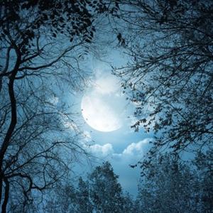Noche de Walpurgis